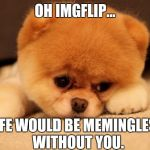 Sad puppy | OH IMGFLIP... LIFE WOULD BE MEMINGLESS WITHOUT YOU. | image tagged in sad puppy,imgflip,memes | made w/ Imgflip meme maker