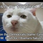 Surprised Face  | This is my Surprised Face when the Democrats blame George W. Bush for Obama's failures | image tagged in surprised face | made w/ Imgflip meme maker