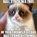 Grumpy Cat Meme | YOUR FREIND GETS YOUR BALL STUCK IN A TREE. HE THEN THROWS A SECOND BALL TO KNOCK IT DOWN WHICH ALSO GETS STUCK. | image tagged in memes,grumpy cat | made w/ Imgflip meme maker