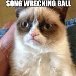 Grumpy Cat Meme | EVER HERD THAT SONG WRECKING BALL YOU WERE WHAT IT HIT | image tagged in memes,grumpy cat | made w/ Imgflip meme maker