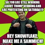 Contradictory Chris Meme | SO YOU ARE STILL WHINING ABOUT TRUMP WINNING AND ARE PROTESTING ON SATURDAY? HEY SNOWFLAKE, MAKE ME A SAMMICH! | image tagged in memes,contradictory chris | made w/ Imgflip meme maker