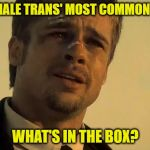 BRAD PITT SE7EN | POST-OP MALE TRANS' MOST COMMON QUESTION WHAT'S IN THE BOX? | image tagged in brad pitt se7en | made w/ Imgflip meme maker