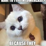 bad pun cat  | YOU KNOW WHY LIBERALS HAVE TO TYPE IN LOWERCASE? BECAUSE THEY HATE CAPITALISM | image tagged in bad pun cat | made w/ Imgflip meme maker