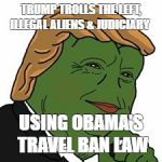 Pepe Trump | TRUMP TROLLS THE LEFT, ILLEGAL ALIENS & JUDICIARY USING OBAMA'S TRAVEL BAN LAW | image tagged in pepe trump | made w/ Imgflip meme maker