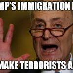 Chuck Schumer | TRUMP'S IMMIGRATION PLAN WILL MAKE TERRORISTS ANGRY! | image tagged in chuck schumer | made w/ Imgflip meme maker