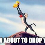 lion king | I AM ABOUT TO DROP YOU | image tagged in lion king | made w/ Imgflip meme maker