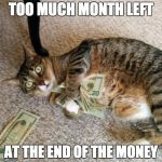 Sometimes there's too much MONTH left at the end of the MONEY | TOO MUCH MONTH LEFT AT THE END OF THE MONEY | image tagged in money cat,poor,payday | made w/ Imgflip meme maker