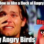 Atlanta Falcons vs New England Patriots Super Bowl LI | They flew in like a flock of Angry Birds Very Angry Birds Rise Up! | image tagged in tom brady crying,atlanta falcons,angry birds,super bowl | made w/ Imgflip meme maker
