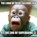 Amazing Win by the New England Patriots in Overtime... | THE LOOK OF EVERY FALCONS FAN AT THE END OF SUPERBOWL LI | image tagged in shocked monkey,nfl,superbowl,atlanta falcons,new england patriots | made w/ Imgflip meme maker