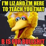 B IS FOR BULLSHIT | I'M LIZ AND I'M HERE TO TEACH YOU THAT B IS FOR BULLSHIT | image tagged in memes,big bird,breaking news,women rights | made w/ Imgflip meme maker