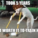 Dog poop | TOOK 5 YEARS BUT WORTH IT TO TRAIN HIM | image tagged in dog poop,scumbag | made w/ Imgflip meme maker