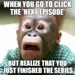 (NOOOOOOOO) | WHEN YOU GO TO CLICK THE 'NEXT EPISODE' BUT REALIZE THAT YOU JUST FINISHED THE SERIES | image tagged in memes,funny,trump,lmao,lol,sad | made w/ Imgflip meme maker