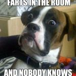 Funny Dog | WHEN SOMEBODY FARTS IN THE ROOM AND NOBODY KNOWS WHO IT WAS | image tagged in funny dog | made w/ Imgflip meme maker