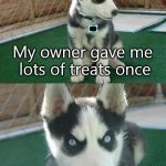 Insanity Puppy Meme | My owner gave me lots of treats once ONCE | image tagged in memes,insanity puppy | made w/ Imgflip meme maker
