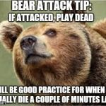 Never take bear-attack advice from a hungry bear. | BEAR ATTACK TIP: IT WILL BE GOOD PRACTICE FOR WHEN YOU ACTUALLY DIE A COUPLE OF MINUTES LATER IF ATTACKED, PLAY DEAD | image tagged in memes,smug bear | made w/ Imgflip meme maker