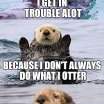 Bad pun otter | I GET IN TROUBLE ALOT BECAUSE I DON'T ALWAYS DO WHAT I OTTER | image tagged in bad pun otter | made w/ Imgflip meme maker