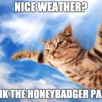Flying-cat | NICE WEATHER? THANK THE HONEYBADGER PANDA! | image tagged in flying-cat | made w/ Imgflip meme maker