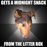 Depression Dog Meme | GETS A MIDNIGHT SNACK FROM THE LITTER BOX | image tagged in memes,depression dog | made w/ Imgflip meme maker
