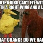 Big Bird And Snuffy Meme | SO IF A BIRD CAN'T FLY WITH BOTH A RIGHT WING AND A LEFT WHAT CHANCE DO WE HAVE? | image tagged in memes,big bird and snuffy | made w/ Imgflip meme maker
