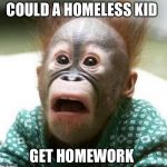 Shocked Monkey | COULD A HOMELESS KID GET HOMEWORK | image tagged in shocked monkey | made w/ Imgflip meme maker