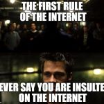 The snowflakes are about to fly | THE FIRST RULE OF THE INTERNET NEVER SAY YOU ARE INSULTED ON THE INTERNET | image tagged in first rule of the fight club,snowflakes | made w/ Imgflip meme maker