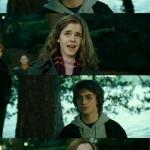 Harry Potter and Hermione meme