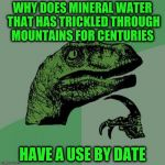 Philosoraptor Meme | WHY DOES MINERAL WATER THAT HAS TRICKLED THROUGH MOUNTAINS FOR CENTURIES HAVE A USE BY DATE | image tagged in memes,philosoraptor | made w/ Imgflip meme maker
