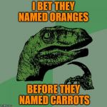 Credit: Demetri Martin | I BET THEY NAMED ORANGES BEFORE THEY NAMED CARROTS | image tagged in memes,philosoraptor | made w/ Imgflip meme maker