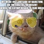 Fear And Loathing Cat Meme | WE WERE JUST OUTSIDE OF BARSTOW, ON THE EDGE OF THE DESERT WHEN THE CATNIP BEGAN TO TAKE HOLD. | image tagged in memes,fear and loathing cat | made w/ Imgflip meme maker