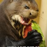 Self Loathing Otter Meme | YOU WANT IT BACK, YOU FREAK? WELL I BIT OUT OF IT, AND I GOT RABIES! | image tagged in memes,self loathing otter | made w/ Imgflip meme maker