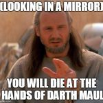 Jedi Mind Trick | (LOOKING IN A MIRROR) YOU WILL DIE AT THE HANDS OF DARTH MAUL | image tagged in jedi mind trick | made w/ Imgflip meme maker