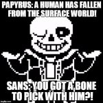 Sans | PAPYRUS: A HUMAN HAS FALLEN FROM THE SURFACE WORLD! SANS: YOU GOT A BONE TO PICK WITH HIM?! | image tagged in sans | made w/ Imgflip meme maker
