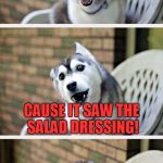 Fruit Week! By 123Guy | WHY WAS THE TOMATO BLUSHING? CAUSE IT SAW THE SALAD DRESSING! | image tagged in bad pun dog 2,fruit week,memes,bad pun dog,trhtimmy | made w/ Imgflip meme maker