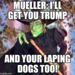 Wicked Witch | MUELLER: I'LL GET YOU TRUMP AND YOUR LAPING DOGS TOO! | image tagged in wicked witch | made w/ Imgflip meme maker