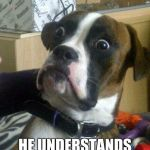 Funny Dog | OWNER SAID BARK HE UNDERSTANDS MY LANGUAGE | image tagged in funny dog | made w/ Imgflip meme maker