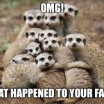Animals Hugging | OMG! WHAT HAPPENED TO YOUR FACE!! | image tagged in animals hugging | made w/ Imgflip meme maker