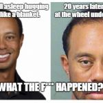 1q1deo tiger woods side by side meme generator imgflip