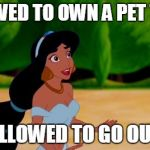 Princess Jasmine | ALLOWED TO OWN A PET TIGER NOT ALLOWED TO GO OUTSIDE | image tagged in princess jasmine | made w/ Imgflip meme maker
