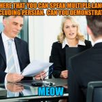 job interview | IT SAYS HERE THAT YOU CAN SPEAK MULTIPLE LANGUAGES, INCLUDING PERSIAN.  CAN YOU DEMONSTRATE? MEOW | image tagged in job interview | made w/ Imgflip meme maker