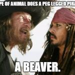 Barbosa And Sparrow Meme | WHAT TYPE OF ANIMAL DOES A PEG LEGGED PIRATE HATE? A BEAVER. | image tagged in memes,barbosa and sparrow | made w/ Imgflip meme maker