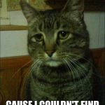 Depressed Cat Meme | I AM DEPRESSED... CAUSE I COULDN'T FIND OUT WHY I'M DEPRESSED | image tagged in memes,depressed cat | made w/ Imgflip meme maker