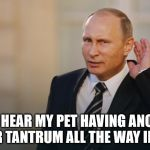 Putin is listening to you | I CAN HEAR MY PET HAVING ANOTHER TWITTER TANTRUM ALL THE WAY IN RUSSIA | image tagged in putin is listening to you | made w/ Imgflip meme maker