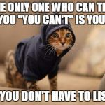 "Hoody Cat Meme | THE ONLY ONE WHO CAN TELL YOU ""YOU CAN'T"" IS YOU. AND YOU DON'T HAVE TO LISTEN. 