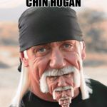 Chin Hogan | CHIN HOGAN | image tagged in hulk chin,memes,cats,dogs,funny,all the good tags here top okay | made w/ Imgflip meme maker