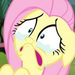 Crying Fluttershy meme