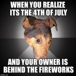 Depression Dog Meme | WHEN YOU REALIZE ITS THE 4TH OF JULY AND YOUR OWNER IS BEHIND THE FIREWORKS | image tagged in memes,depression dog | made w/ Imgflip meme maker
