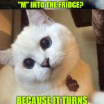 "I Love Mice ♡  | WHY DID THE CAT PUT THE LETTER ""M"" INTO THE FRIDGE? BECAUSE IT TURNS ""ICE"" INTO ""MICE""! 