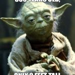 Star Wars Yoda Meme | 800 YEARS OLD, ONLY 2 FEET TALL | image tagged in memes,star wars yoda | made w/ Imgflip meme maker