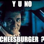 Legal Bill Murray Meme | Y  U  NO CHEESBURGER  ? | image tagged in memes,legal bill murray | made w/ Imgflip meme maker