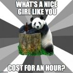 Pickup Line Panda Meme | WHAT'S A NICE GIRL LIKE YOU COST FOR AN HOUR? | image tagged in memes,pickup line panda | made w/ Imgflip meme maker